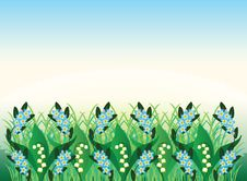 Free Spring Flowers Ornament Stock Image - 24326691