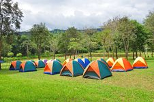 Free Rows Of Colorful Tent, Forest Campsite Royalty Free Stock Photo - 24327755