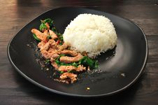 Free Rice With Stir Fried Hot And Spicy Pork With Basil Stock Photography - 24327852