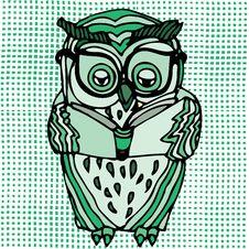 Free Vivid Illustration Of Owl Stock Photos - 24338683