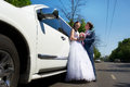 Free Bride And Groom About Wedding Limo Royalty Free Stock Images - 24342619