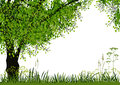 Free Nature Background Stock Photography - 24347952