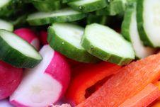 Free Vegetarian Spring Salad Royalty Free Stock Photo - 24344955