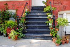 Free Florist Shop Entry Stock Photos - 24348003