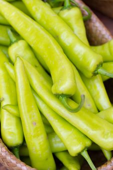 Free Group Of Green Chilli Stock Image - 24351411