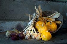 Free Autumn Harvest Stock Photography - 24358062