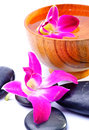 Free Image Of Spa Therapy Royalty Free Stock Images - 24372699
