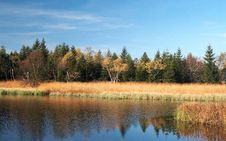 Free Autumn Colors At Black Pond Royalty Free Stock Images - 24375379