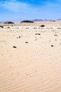 Free Desert Landscape Royalty Free Stock Photography - 24381277