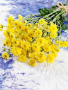 Free Yellow Flowers Royalty Free Stock Photography - 24381377