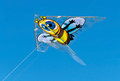 Free Bee Kite Stock Images - 24387504