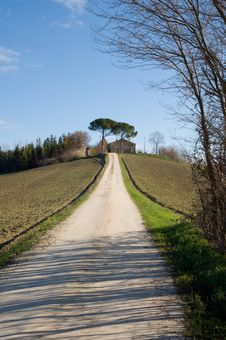 Farm In Val Of Recanati, Italy Stock Image