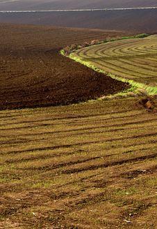 Free Farm In Val Of Recanati, Italy Royalty Free Stock Photo - 24380695