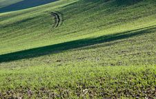 Farm In Val Of Recanati, Italy Stock Images