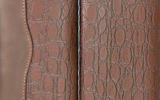 Free Crocodile Leather Brown Stock Images - 24381064