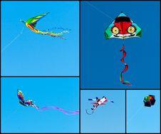 Free Kites Collage Royalty Free Stock Photos - 24387508