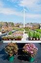 Free Wind Powered Flower Nursery Royalty Free Stock Image - 24395626