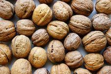 Free Walnuts Stock Image - 24390241