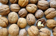 Free Walnuts Royalty Free Stock Images - 24390249
