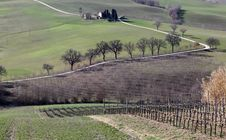 Farm In Val Of Recanati, Italy Stock Photos
