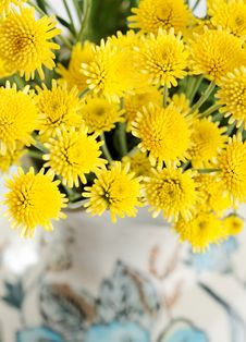 Free Yellow Flowers Royalty Free Stock Image - 24394616