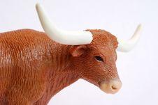 Free Longhorn Stock Image - 2441581