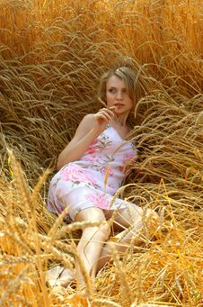 Free Anna In Wheat Field 3 Stock Photo - 2442830
