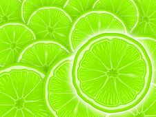 Free CITRUS Stock Photo - 2443190