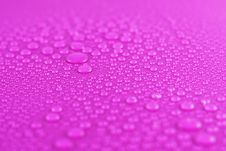 Water Drops On Pink Stock Images
