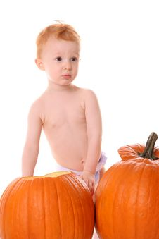 Free Tall Pumpkin Redhead Portrait Stock Photos - 2444073