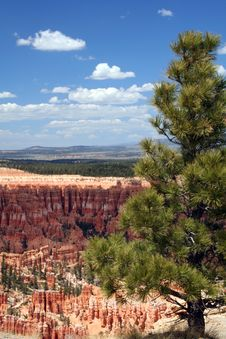 Free Bryce Canyon Stock Image - 2446031