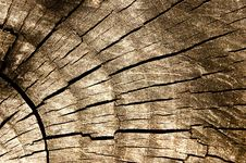 Free Wood Royalty Free Stock Image - 2446966