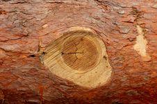 Free Wood Royalty Free Stock Image - 2447096