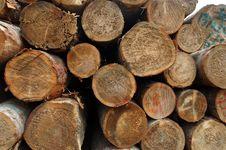 Free Wood Stock Photos - 2447133