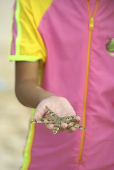 Free Starfish In Girl S Hand Royalty Free Stock Photos - 2447378