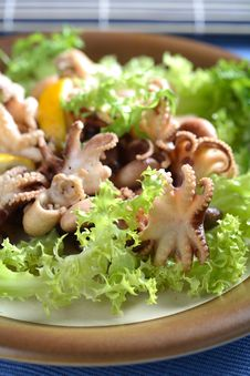 Free Squids, Lettuce And Lemon Royalty Free Stock Photography - 2447847