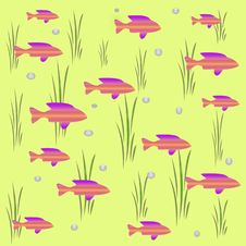 Free Fish And Bubbles Royalty Free Stock Images - 2448029