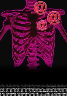 Free Skeleton In Pink Royalty Free Stock Images - 2448159