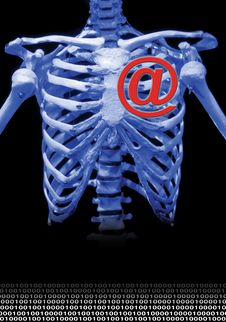Free Skeleton In Blue Royalty Free Stock Photography - 2448167