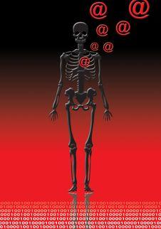 Free Skeleton With @ Stock Photo - 2448170
