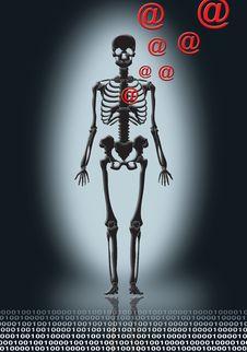 Free Skeleton In Black Royalty Free Stock Photography - 2448177