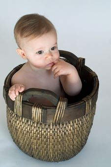 Free Basket Baby Stock Images - 2449274