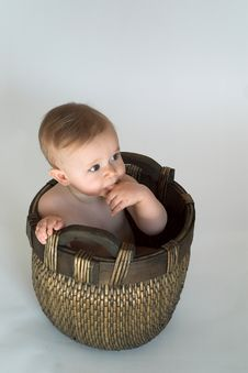 Free Basket Baby Royalty Free Stock Photo - 2449275