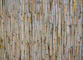 Free Old Bamboo / Reed Texture Stock Images - 24417674