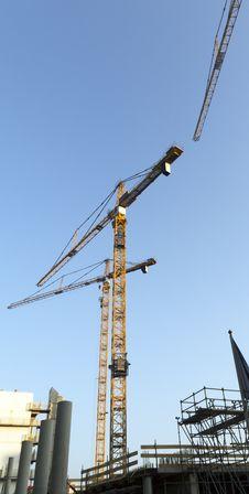 Free Cranes Stock Photo - 24413460
