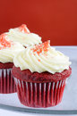 Free Red Velvet Cupcakes Royalty Free Stock Images - 24423619