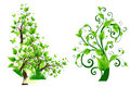 Free Green Floral Designs Royalty Free Stock Image - 24425266