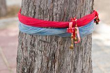 Free Sacred Ribbons Royalty Free Stock Images - 24423579