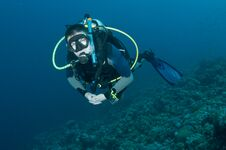 Free Man Scuba Diver On Coral Reef Stock Photos - 24425473