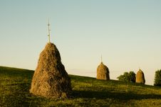 Free Piles Of Hay Royalty Free Stock Photo - 24427545